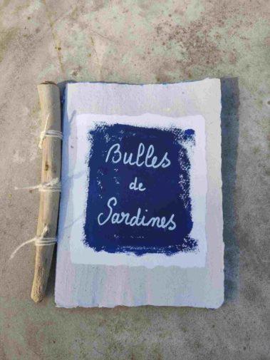 livre-artiste-sardine