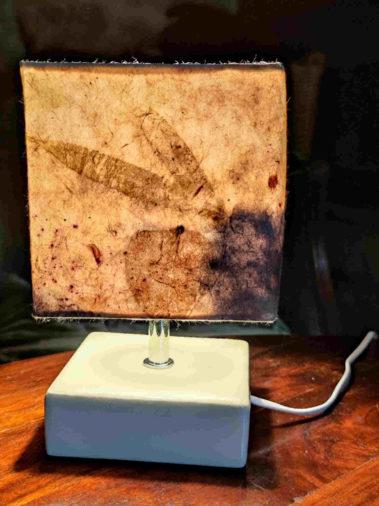 lampe ecoprint eucalyptus